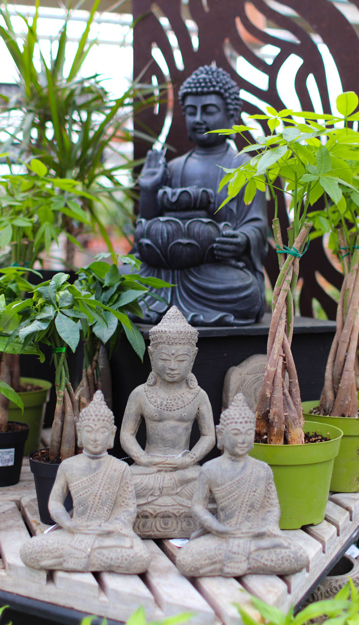 Garden and Home Nursery - Woodinville