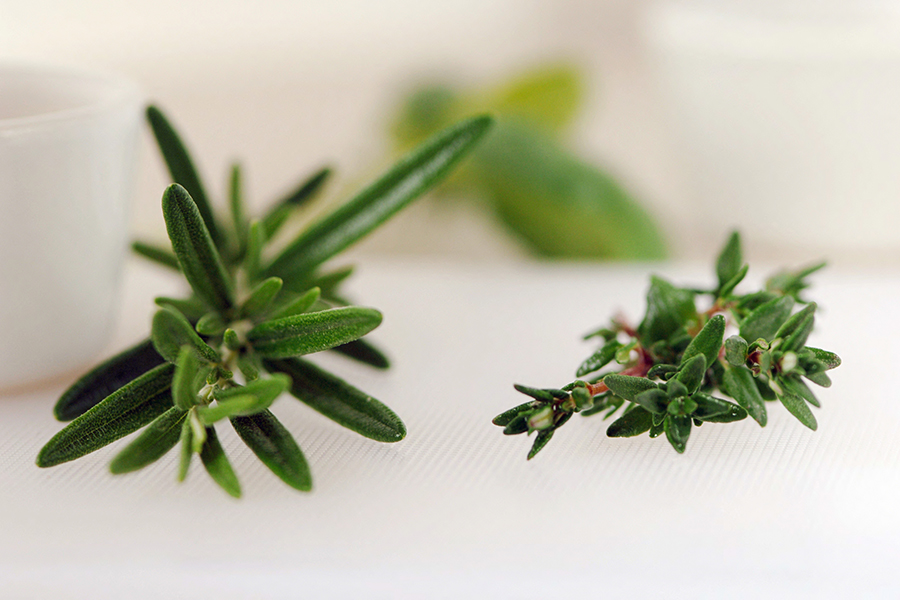 Molbak's rosemary and thyme, close-up