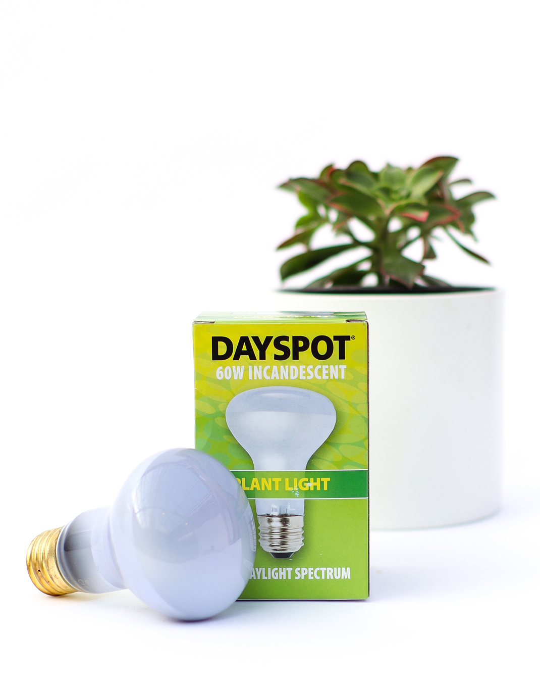 Indoor Plant Full Spectrum Bulb 60 watt