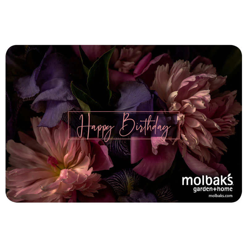 Happy Birthday eGift Card with Pink and Purple Flowers Molbak's