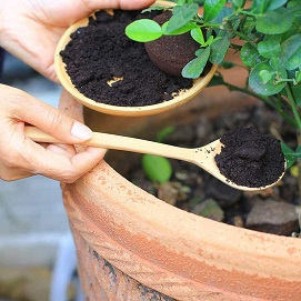 Compost - Garden Supplies - Molbak's Garden + Home