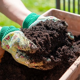 Potting Soils - Garden Supplies - Molbak's Garden + Home