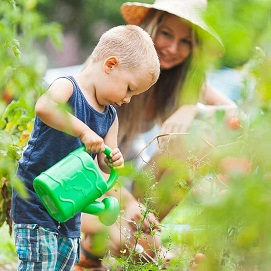 The Family Garden - Garden Supplies - Molbak's Garden + Home