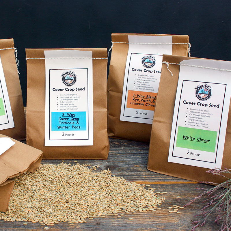 Packages of different Cover Crop Seeds for the Garden