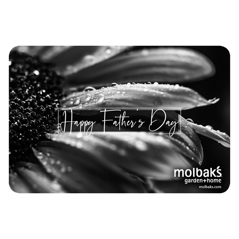 Fathers Day eGift Card
