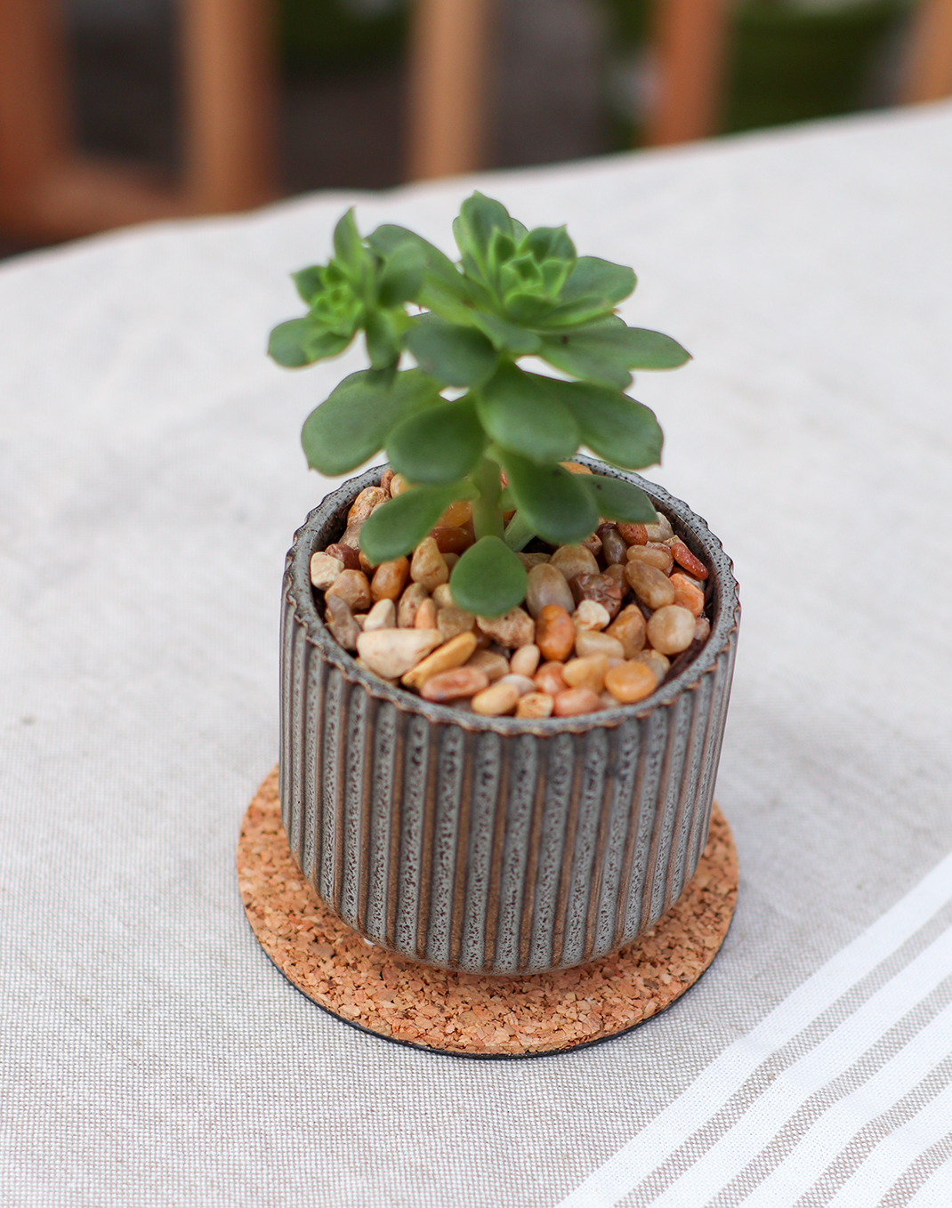 Eco Cork Plant Mat - 4 in.
