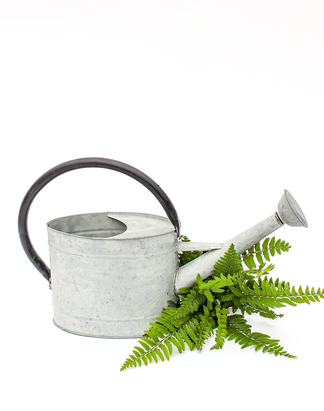 Metal Watering Can - .7 gal.