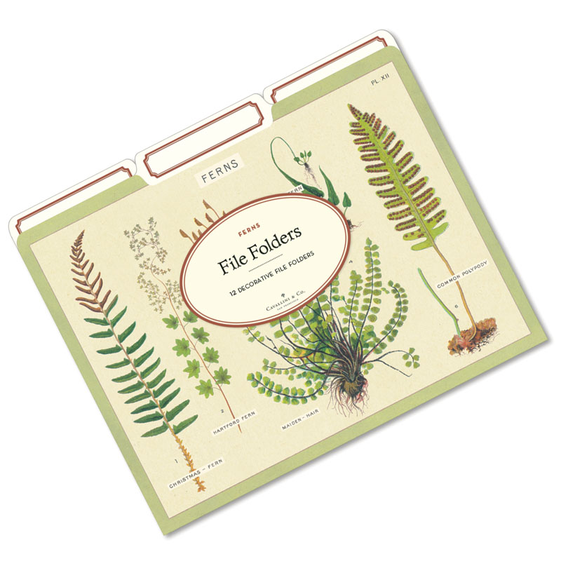 File folders with vintage fern artwork