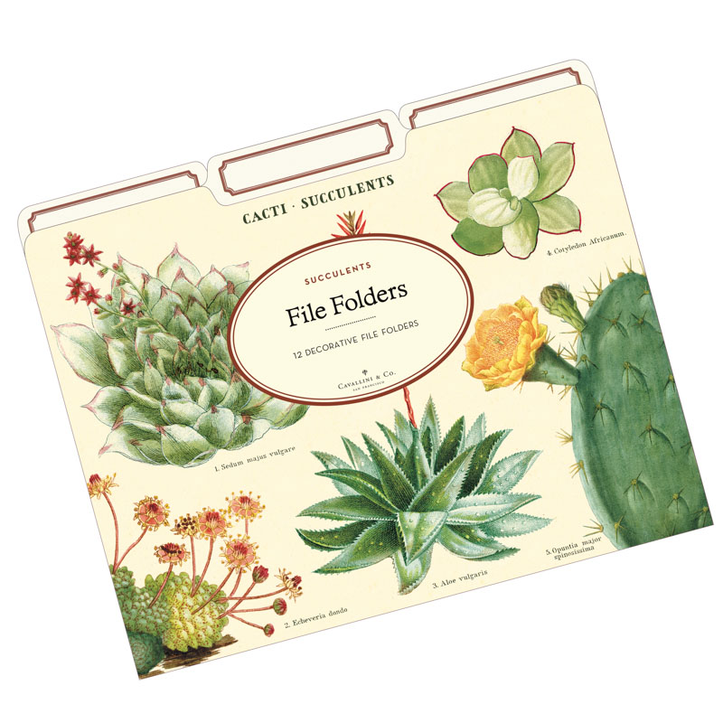 File Folder Set with Succulent Art