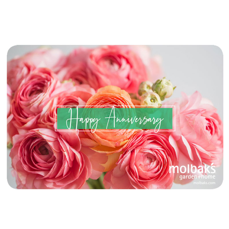 Happy Aniversary eGift Card