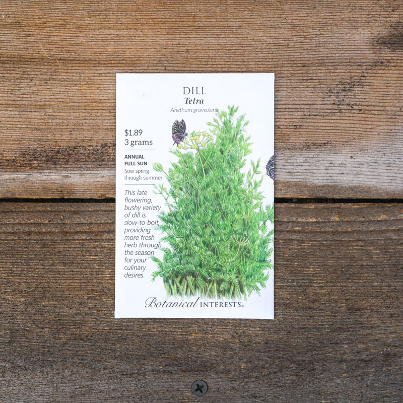 dill seed packets