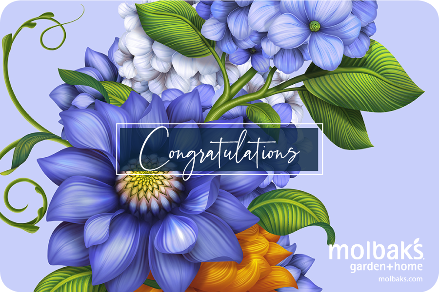Congratulations eGift Card with Purple Flower Design