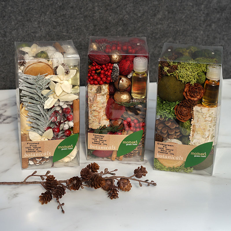 MGR Holiday Boxed Potpourri - Frosted Pine